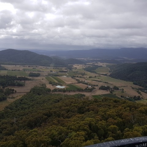 The King Valley Wine Region